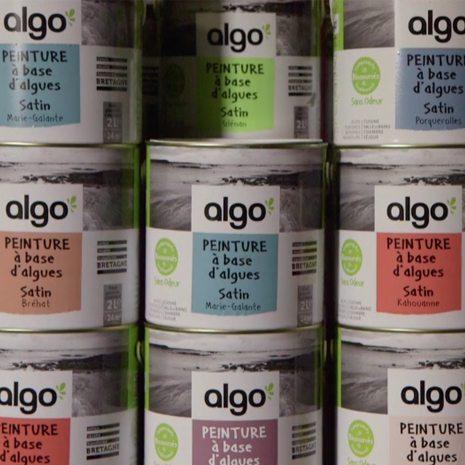 Algo - peinture à base d'algues
